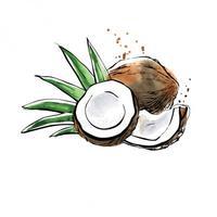 cocon...