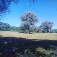 yulia_89
