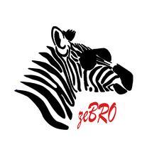 zebro.style