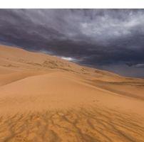 oksana_8821